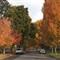 autumn_streets_8