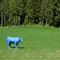 Avatar_Cow