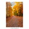 Oak Grove Park_AJG_IMG_4499
