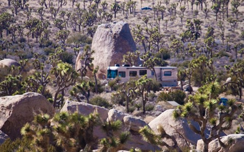 Cool Campsite at Joshua Tree NP