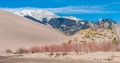 View from Castle Creek- Great Sand Dunes N.P.