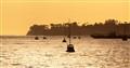 Evening sun on the harbor