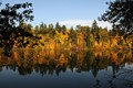 Willamette River fall 1_01