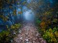 mystic hike