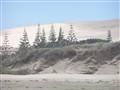 Sand storm, New Zealand