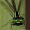 Dragonflies June 4, 2012