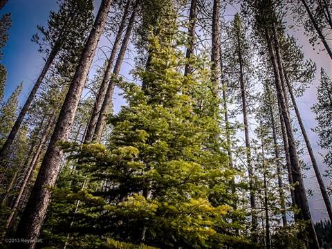 tahoe3-2013-1844