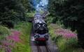 Old British steam loco