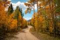 Colorado in September