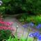 Stevenson House Garden #5 © 2008 Derek Dean