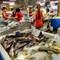 Fresh Fishes Market