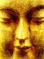 Buddhism : Buddah