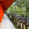 IMG_82571 Nara - Kasuga Taisha shrine