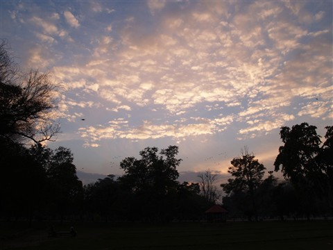 Lawrence Garden, Lahore, Pakistan