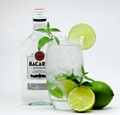 Make The Perfect Mojito for Your Friends