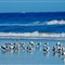 120120 The Beach 2