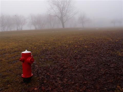 hydrant 142