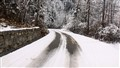 Snowy Winding Road
