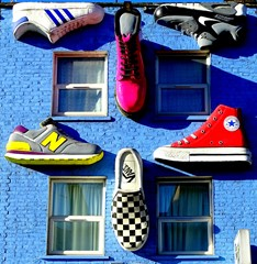 A house for sneakers