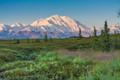 McKinley meadow