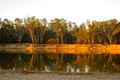 Evening Reflections on the Murray River