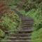 Stairway to Heaven ©2011 Derek Dean