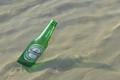On the sea floor