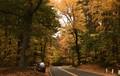Reservoir Road, Holden, MA