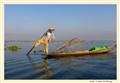 Inle Lake fishing