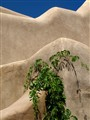 Stucco and Vine