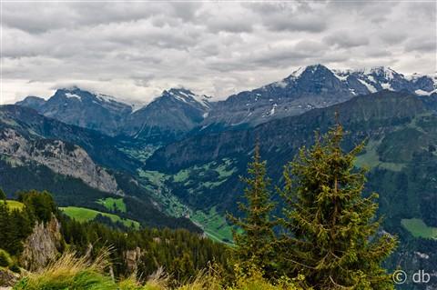 Switzerland - Schynige Platte-4