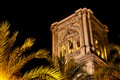 Palms and Cathedral at night