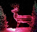Opryland Ice Stag