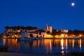 Avignon Papal Palace at night.