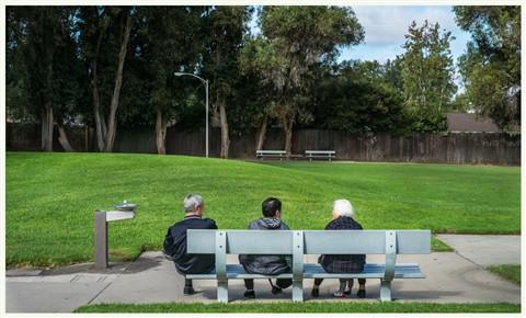 Suburb  -  Park Confab