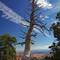 Bryce Canyon: