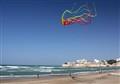 Giant Kite