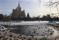 Winter in Moscow Zoo