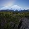 Mt Taranaki from the south