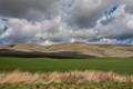 Hay Land