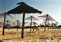 umbrellas in Tunisia