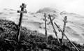Orthodox graves, Unalaska