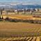 20110204-Carcassonne-_DSC3905