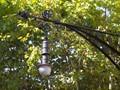 Street Lamp Barcelona