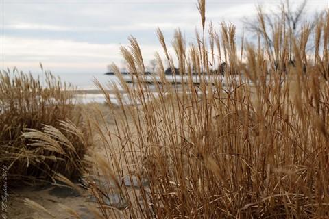 Winter Beach 2 (3000x2000)