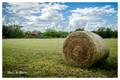 Bale and Barn