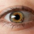 z_eye