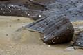 Olivine Beach