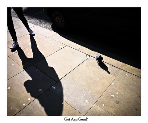 Legs, Pigeon & Gum