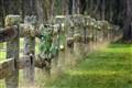 Ebor Cemetery